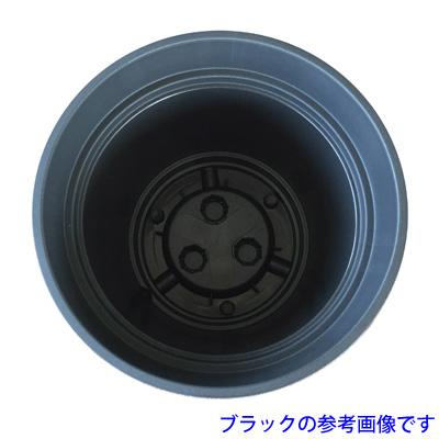 MH-TP-28107058022