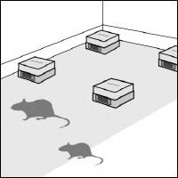 ネズミ駆除対策